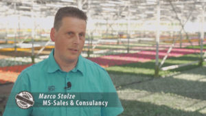 how its done marco stolze ms sales & consultancy